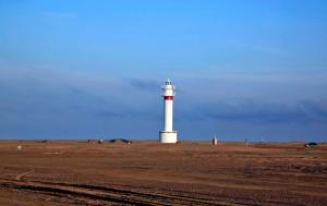 Das Vogel- und Naturschutzgebiet Ebro Delta