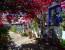 Córdoba: Innenhöfe, Volksfest und der beste Wein aus Montilla-Moriles